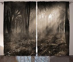 Ambesonne Gothic Decor Curtains 2 Panel Set, Photo of Dark F