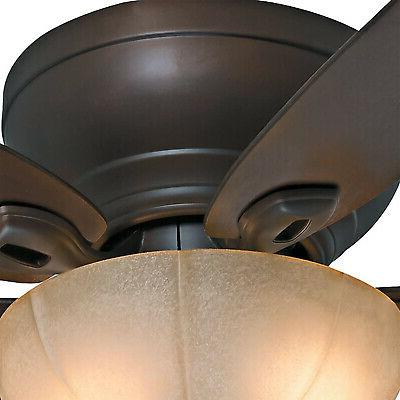 Hunter Company Durant Indoor 54 Inch Ceiling Light,