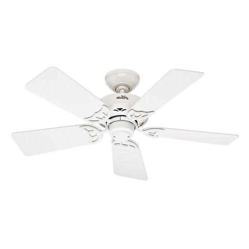 Hunter Fan Company 52065 Hudson 42-Inch Ceiling Fan with Fiv