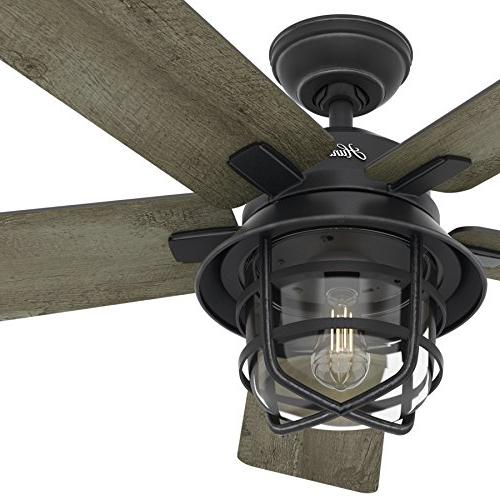 "Hunter Fan 54"" Zinc Fan with Clear LED and Remote"