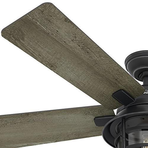 Hunter Fan Weathered Zinc Outdoor Ceiling Fan with LED Remote Control,