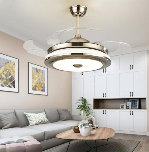 Modern Ceiling Light LED Fixture