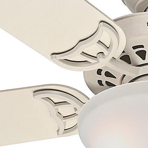 Hunter Fan with Painted Frosted Light 5 Blade