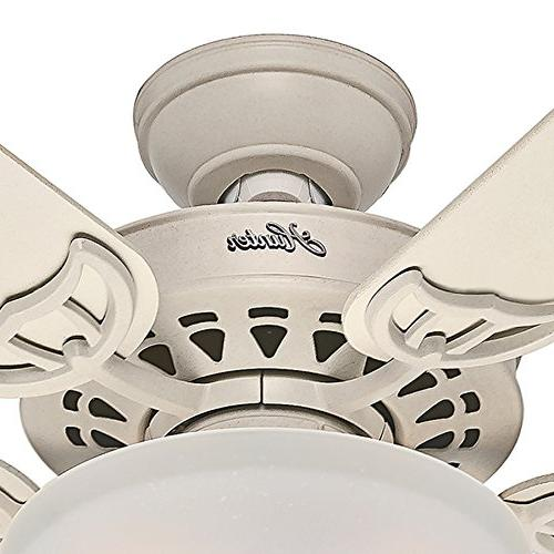 Hunter Fan French Vanilla Ceiling with Painted Light 5