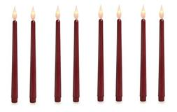 Lily's Home LED Taper Candles. 11 inch Tall. Burgundy. 8 Pac