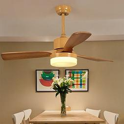 RainierLight Nordic Modern Style Delta Ceiling Fan Eye Prote