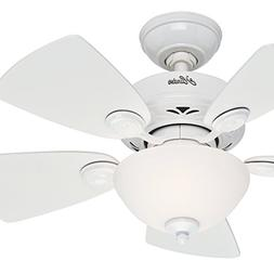 Hunter Fan 34 inch Snow White Finish Ceiling Fan with Painte